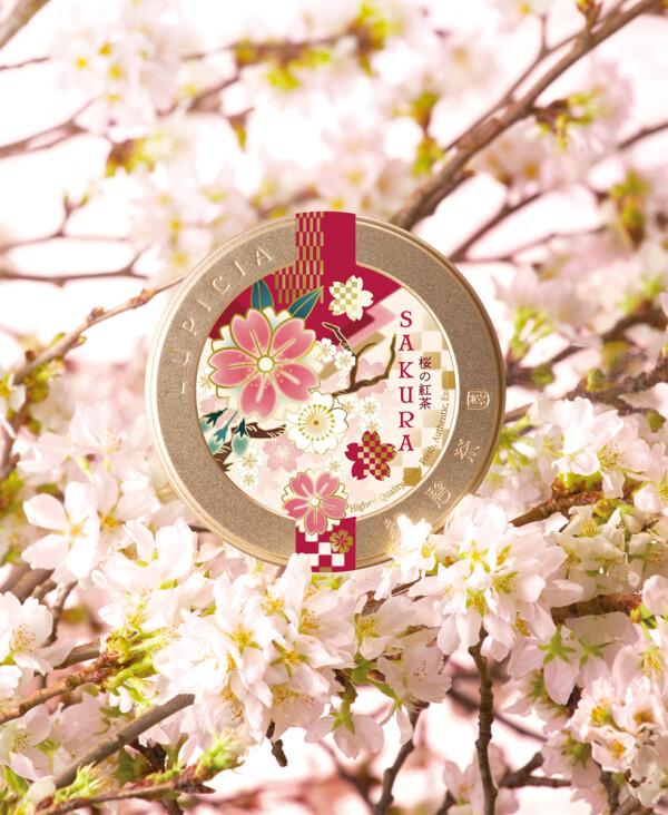 春の訪れを告げる「桜のお茶」